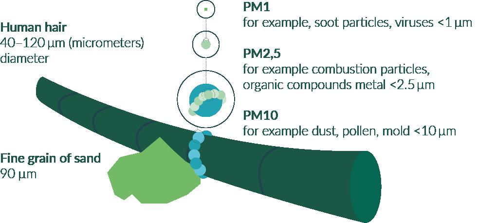 Tiny particles - comparisson fine dust size